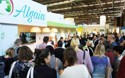 OVERWHELMING SUCCESS FOR ALGAIA AT FIE 2019