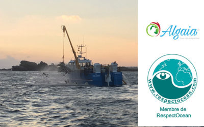 ALGAIA BECOMES A MEMBER OF RESPECT OCEAN