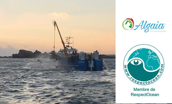 ALGAIA BECOMES A MEMBER OF RESPECT OCEAN